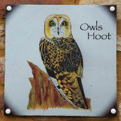 Owls Hoot Door Sign